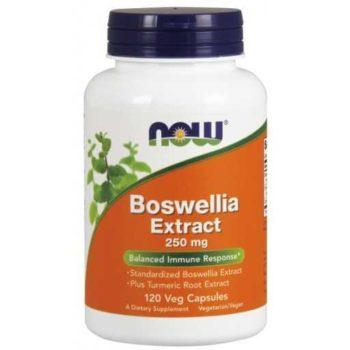 Boswellia Extract Now (Босвеллия)