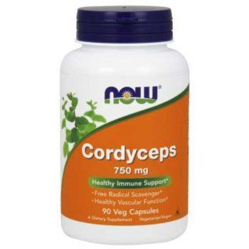 Кордицепс (Cordyceps)