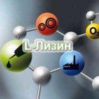 L-Лизин