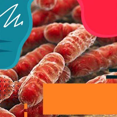 В зоне бактерий